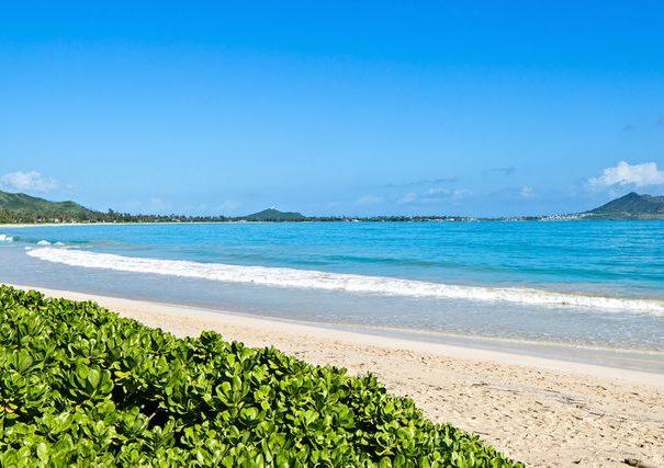 Premier Kailua Beachfront18